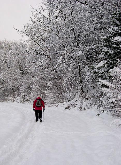 A walker on the Black Path, Galashiels