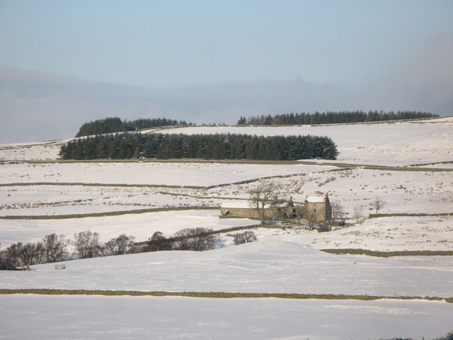 Snowy pastures around Moor House
