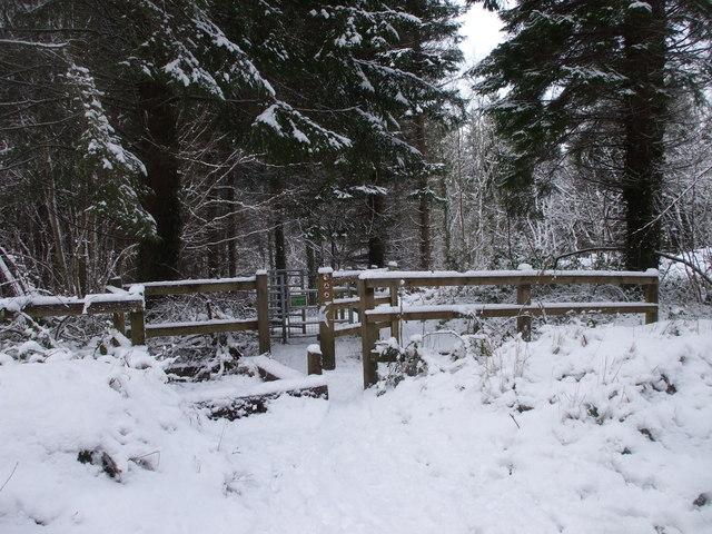 Gate to footpath, the Warren, Caerphilly