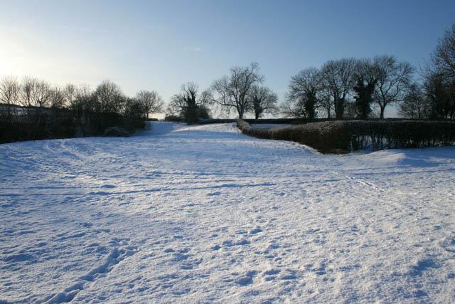 Public Bridleway to  Glebe Farm and White Lodge