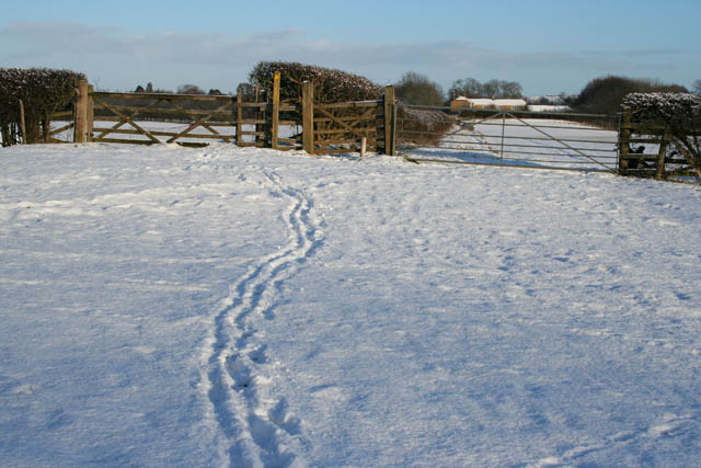 Looking back to Bottom Farm –