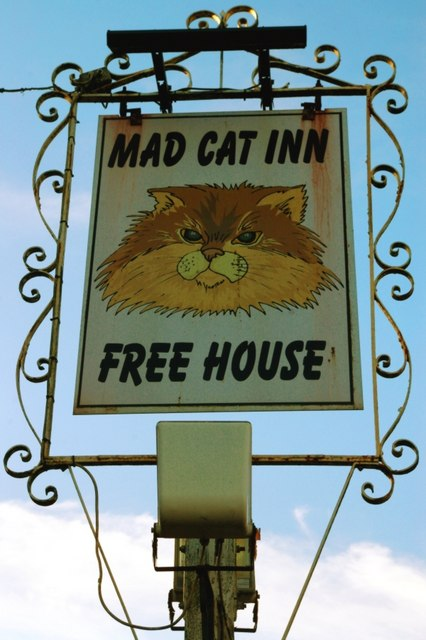 Sign for the Mad Cat Inn