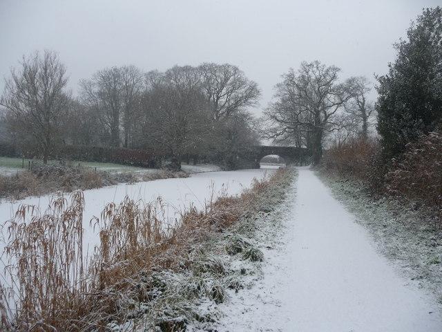 Mid Devon : The Grand Western Canal