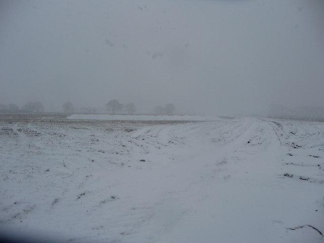 Mid Devon : A Field of Snow