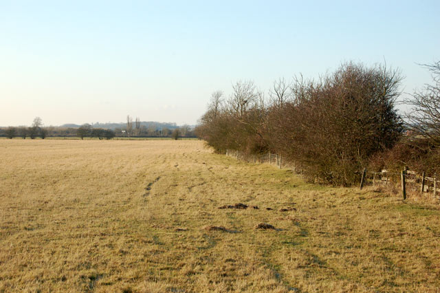 Pasture west of the bridleway to Onley