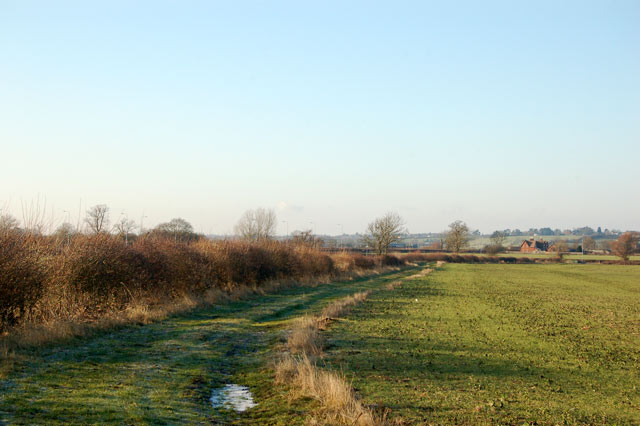 Farm track along headland west of Onley