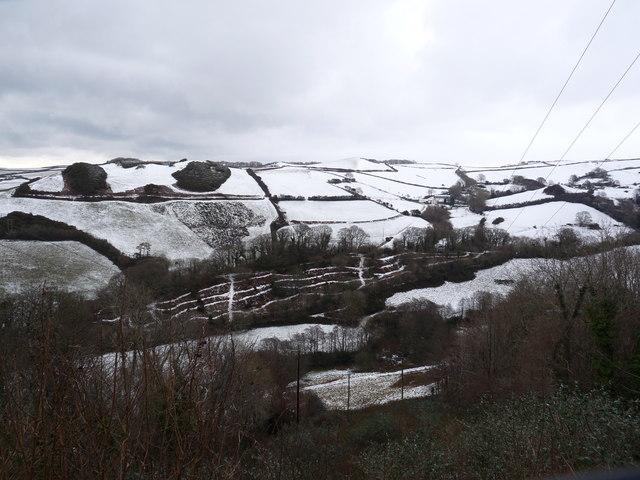 Trayne Hills