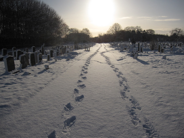 Overleigh new cemetery - footprints in the snow