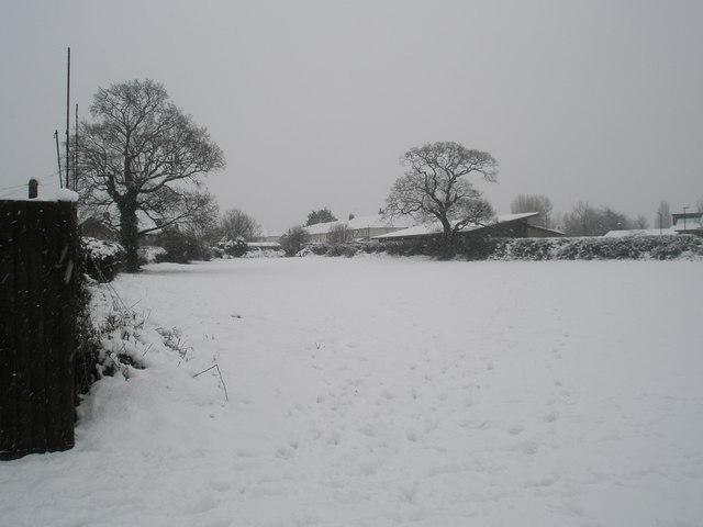 A snowy scene in Trosnant Rec (1)