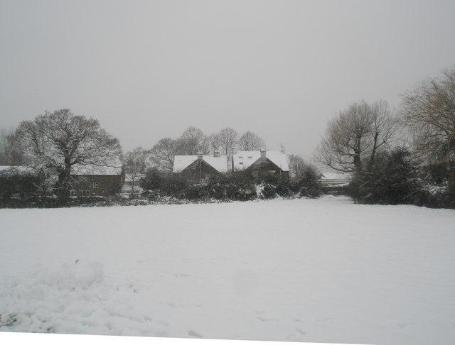 A snowy scene in Trosnant Rec (2)