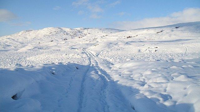 Track by Loch Lundie