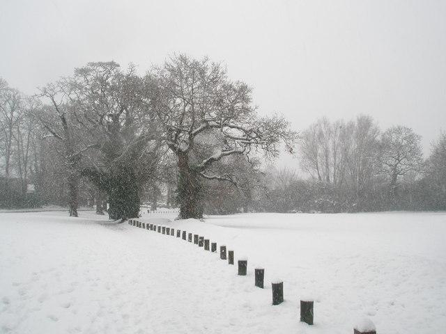A snowy Stockheath Common
