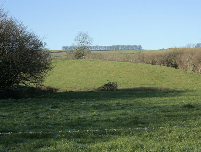 2010 : North west from Hall Lane
