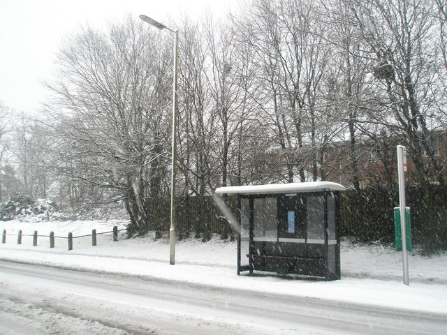 No buses today (3)