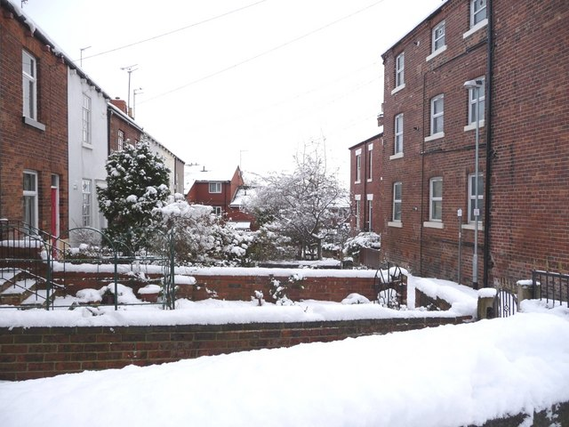Front gardens, College Grove