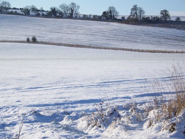 Snowy fields, Faulston Farm