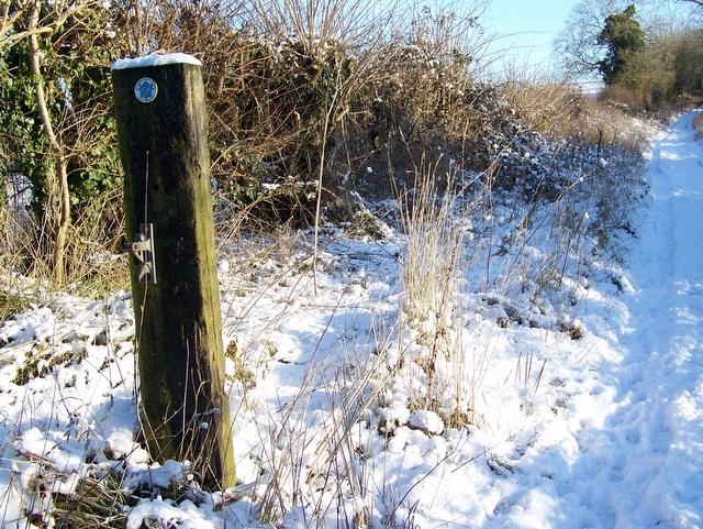 Gate post, Faulston Farm