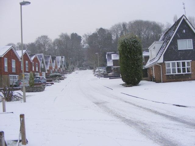 Snowy Rowena Gardens