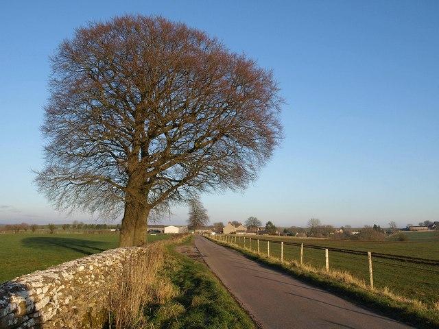 Approaching Tresham