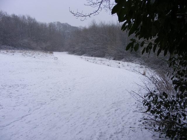 Snowy Park Path