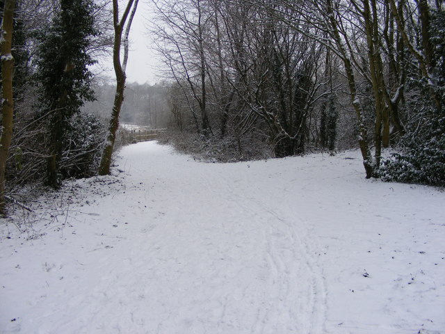 Snowy Path in the Park