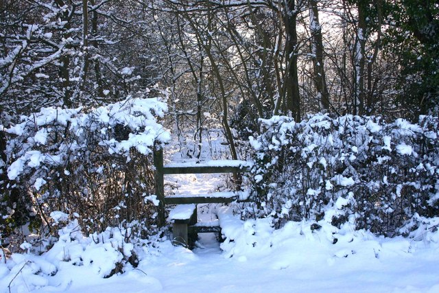 Footpath to Bishop's Gorse in the snow