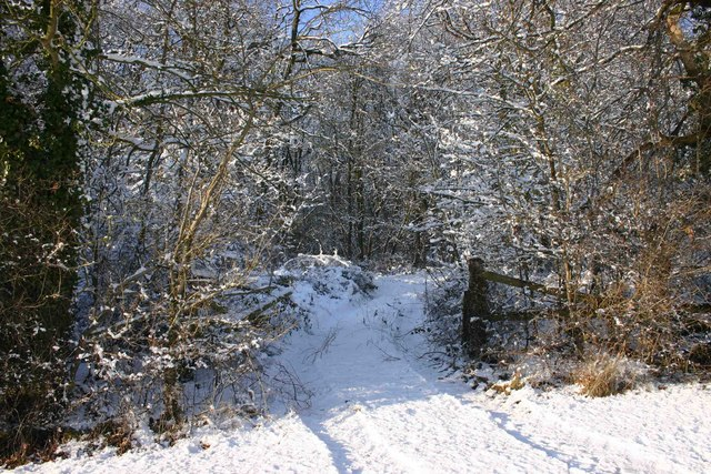 Track into Lighthorne Rough in the snow