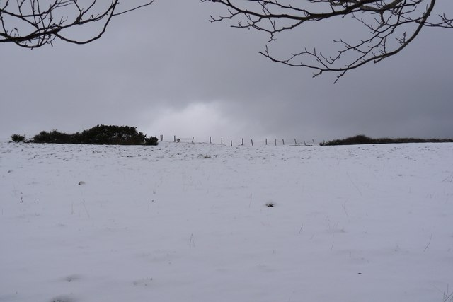 A snow covered  field next to Francis farm