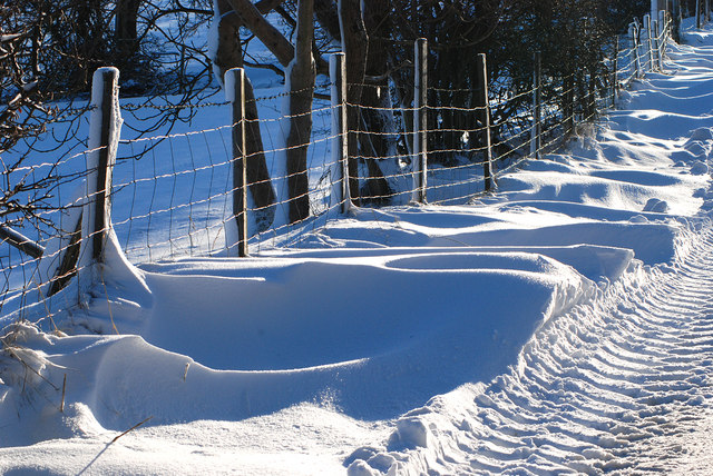 Tracks and drifts