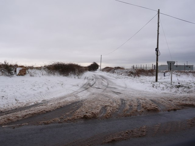 The road leading from the A3123 to West Down