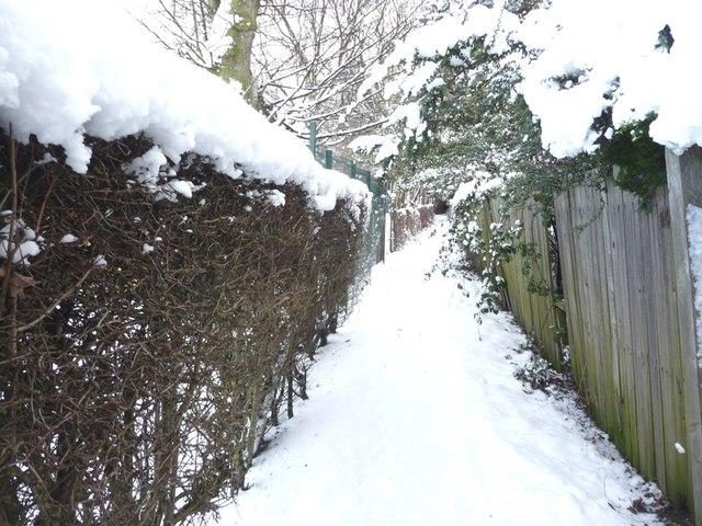 Snowy footpath, heading north