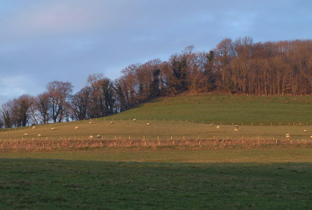 Cotswold scarp at Wortley (2)