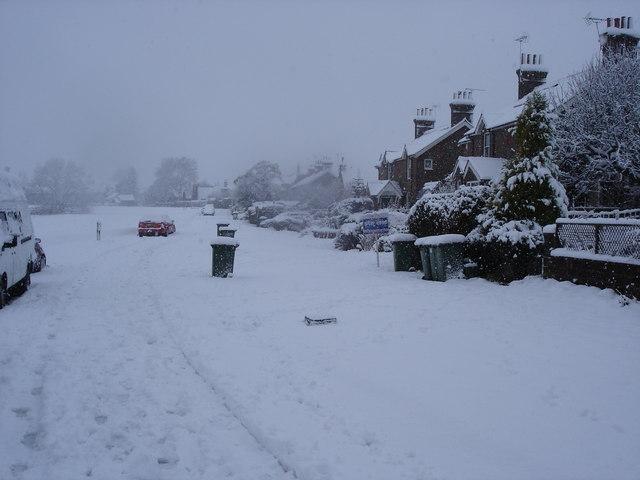 Henfield Common