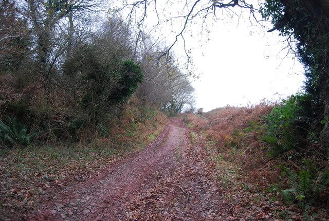 Mill Lane, Carhampton