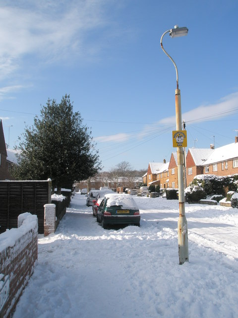 Lamppost in Mitchell Road