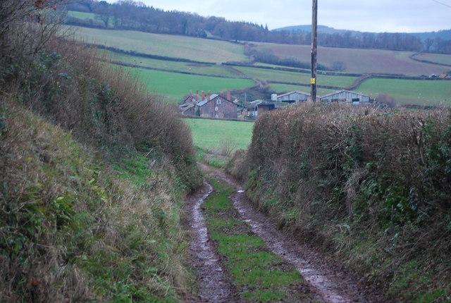 Briddicott Lane