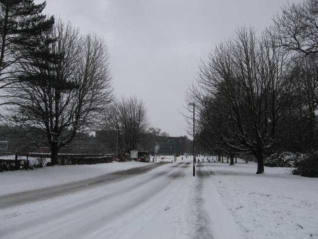Driveway to Government Buildings