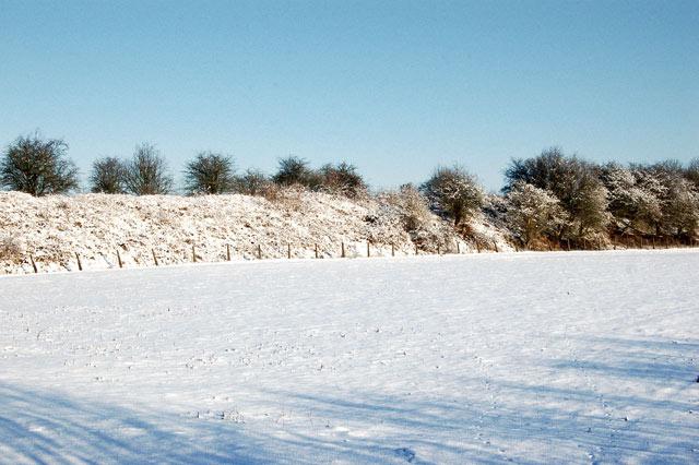 Snow on the disused railway embankment west of Birdingbury