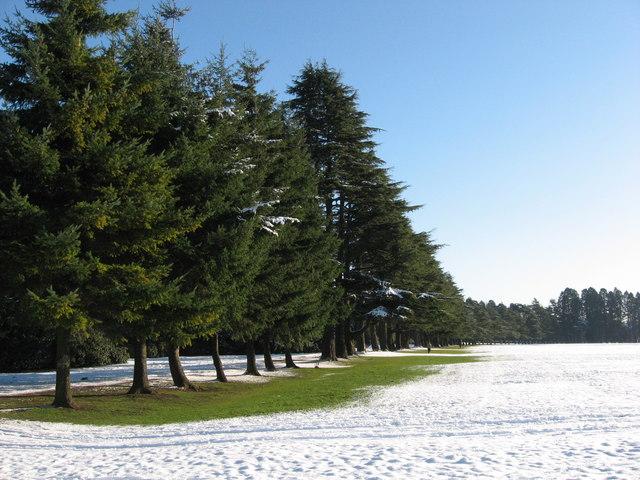 Tredegar House grounds