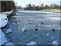SP2872 : Frozen pool at Abbey Fields by E Gammie