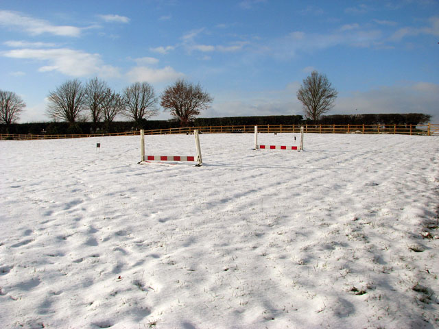 Snow in paddock south of Surlingham Lane