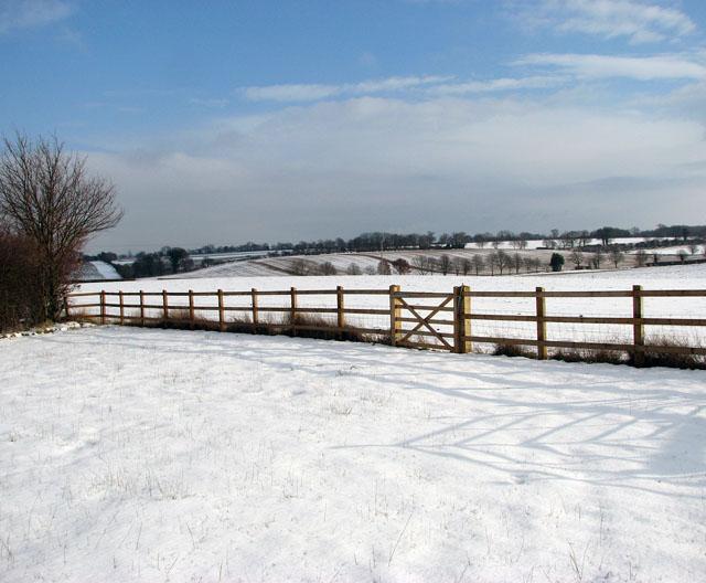 Snowy fields south of Surlingham
