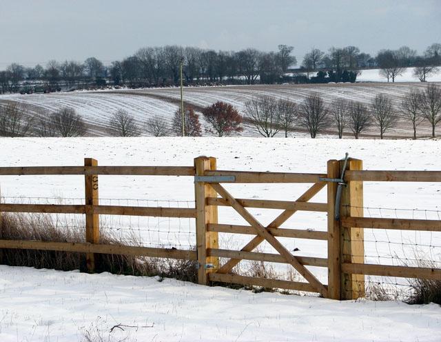 Gate into wintry fields