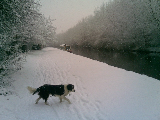 Grand Union Canal in the Snow