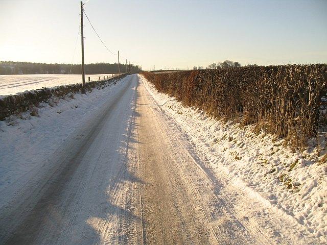 Road to Westmuir