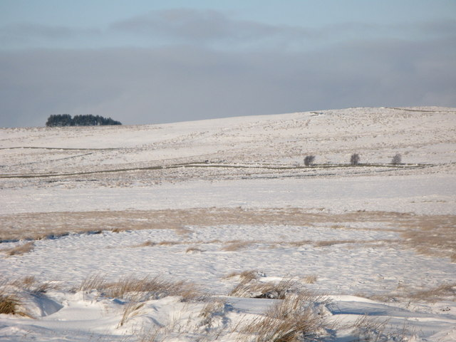 Snowy moorland around Chat's Fell Gate