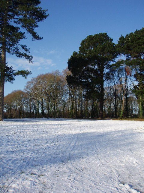 Snow on the old golf course