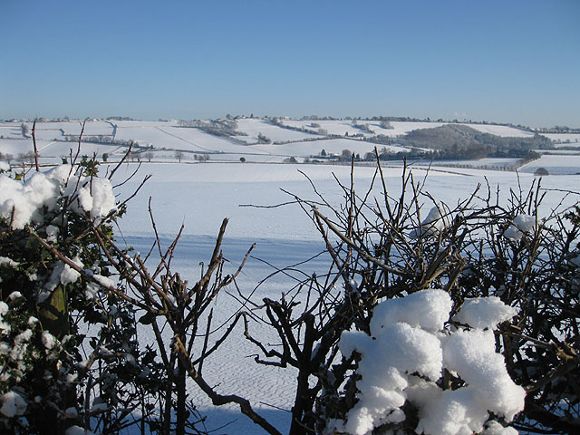 Across the Rudhall Valley