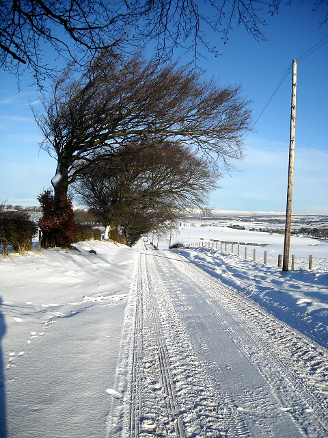 Snow Covered Road from Park Farm