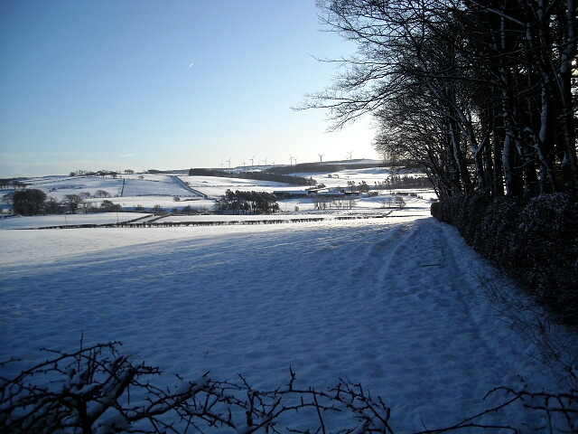 Snow Covered Fields Near Eaglesham